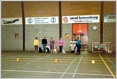 2e locatie Elzenhof indoor 2