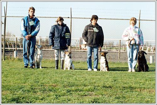 2e locatie Elzenhof puppyveld 8