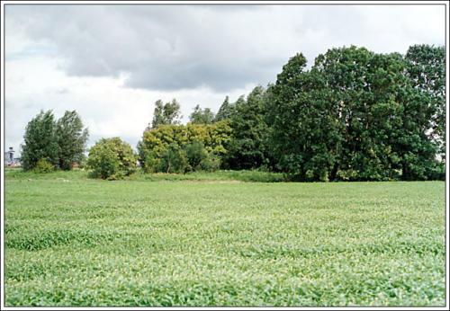 3e locatie AKC Rozenburg terrein 18