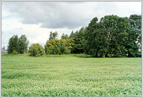 3e locatie AKC Rozenburg terrein 23