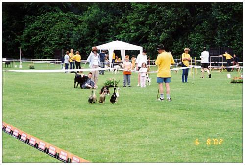 open dag AKC 2002 23