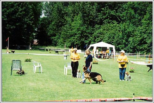 open dag AKC 2002 31