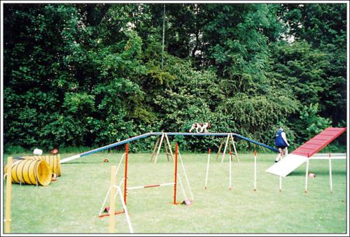 open dag AKC 2002 41