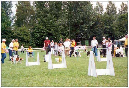 open dag AKC 2002 6
