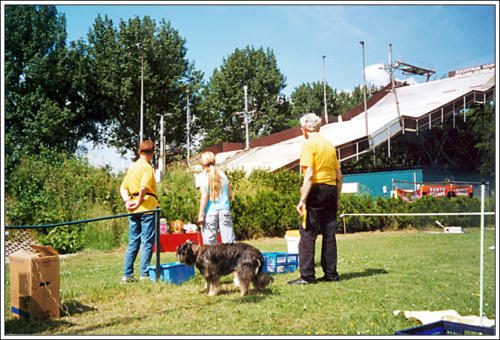open dag AKC 2002 7